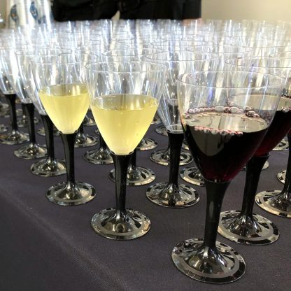 TASTY CATERING -Premium Disposable Wine Glasses